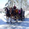 sleigh ride small